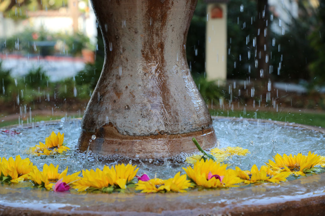 fountain with flower