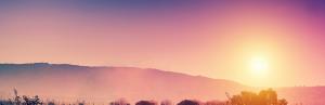 Sunset - Ellen Grace Obrian