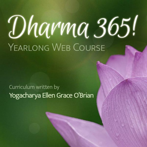 dharma 365 - Yearlong Web Course