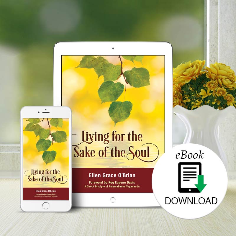 Living for the sake of the soul Ebook
