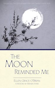 the moon reminded me book cover