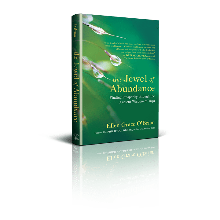 The Jewel of Abundance book cover