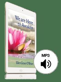 We are Here to Awaken eBook
