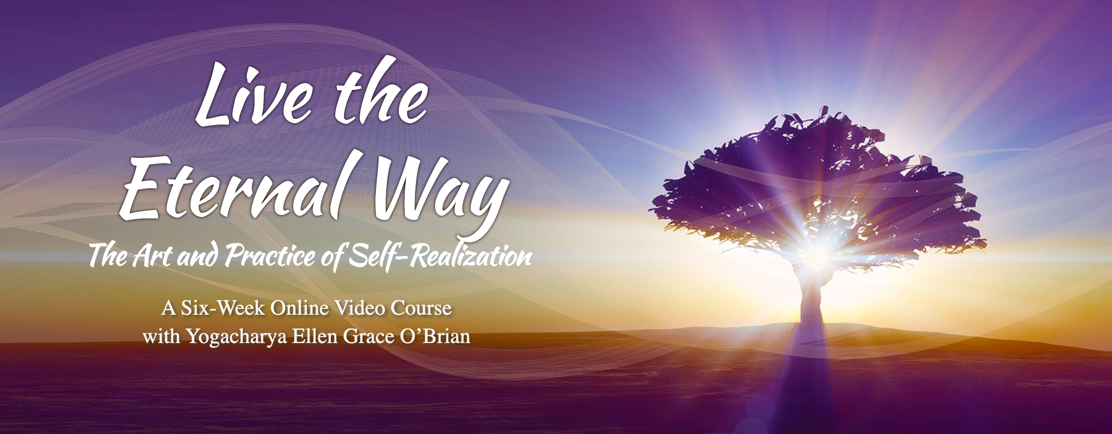 Live the eternal way online course