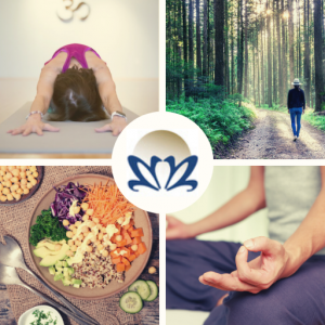 Online meditation retreat