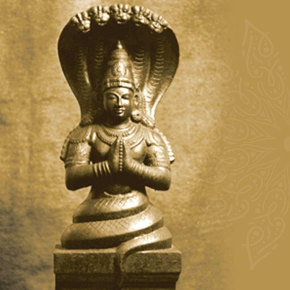 Master Your Mind: Insights and Practices from Yoga Sutra
