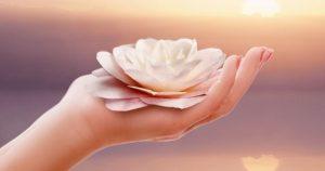 15-min Guided Meditation