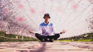meditation Mudra