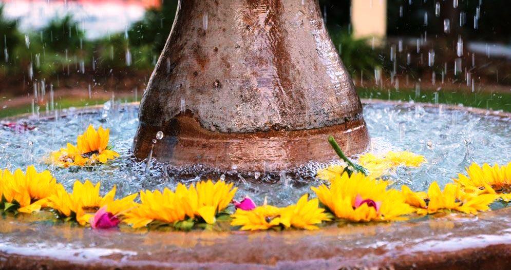 Water Flower fountain